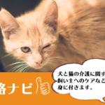 犬猫介護アドバイザー資格