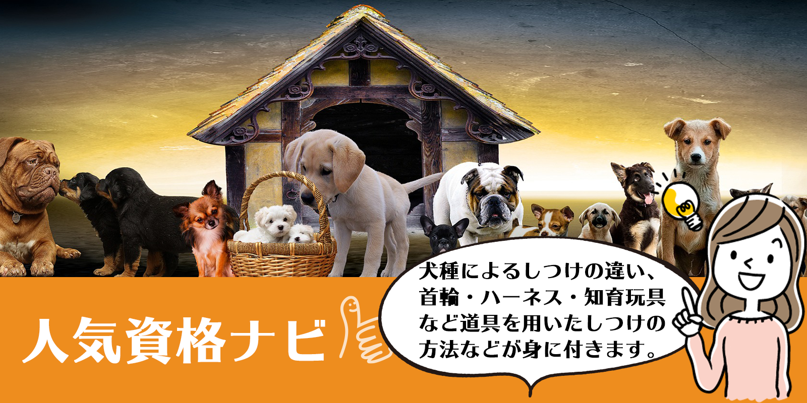 犬のしつけインストラクター資格のアイキャッチ画像