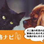 ペット繁殖インストラクター資格
